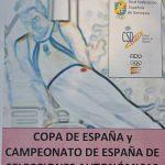 Cartel de la Copa de España y Campeonato de España de Selecciones Autonómicas 2011