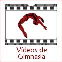 videosdegimnasia.com